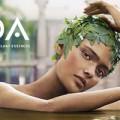 header-aveda-blog-kalista